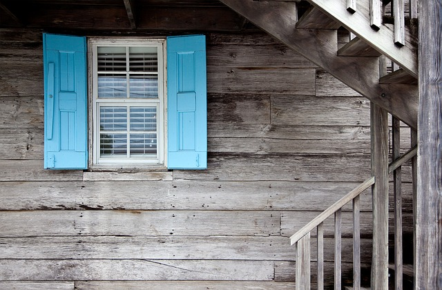 modrá okenice