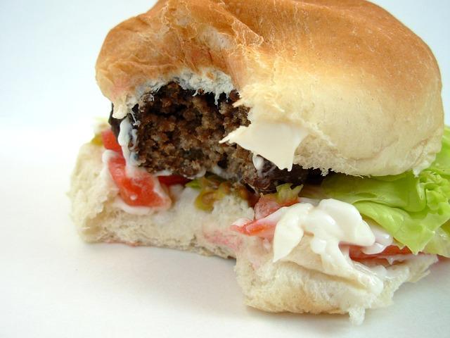 hamburger, nekvalitní potravina.jpg